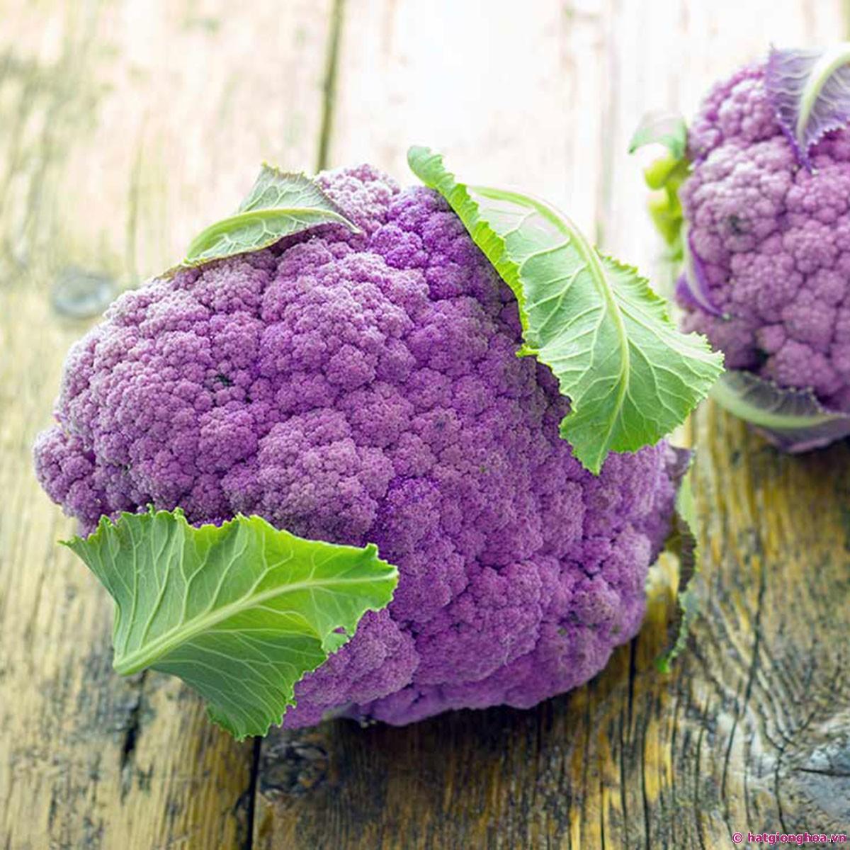 """Top 10 loại rau củ """"đẹp, độc, lạ"""" được săn lùng trồng tại nhà-2"""