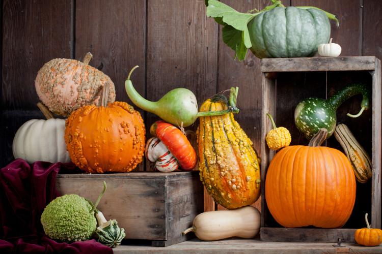 Top 8 loại thực phẩm dành cho người bị viêm loét đại tràng-3