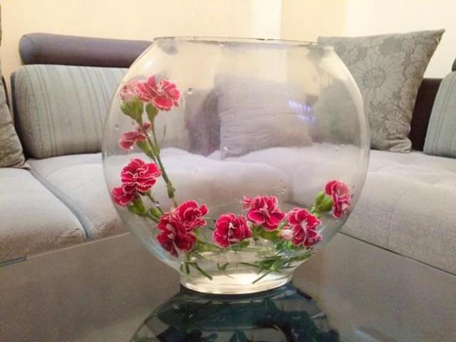 Một cách cắm lọ cao thông thường dễ cắm nhất cho loài hoa cẩm chướng.