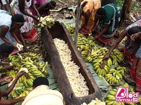 Tiếp theo những người phụ nữ trong làng sẽ cùng nhau bóc hết vỏ chuối, đựng chúng trong một thân cây rỗng