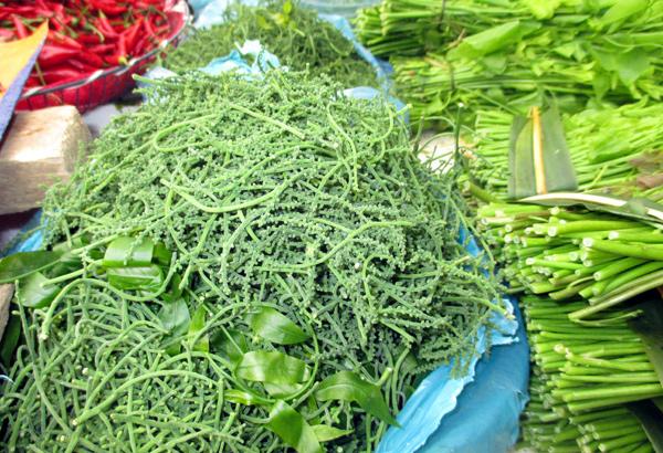 Hoa của rau ngót rừng còn đắt và hiếm hơn
