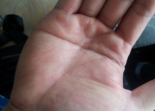 """Theo nhân tướng học những người có """"Bàn tay chữ Nhất""""thường rất thành công."""