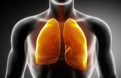 Thanh lọc phổi trong vòng 3 ngày.