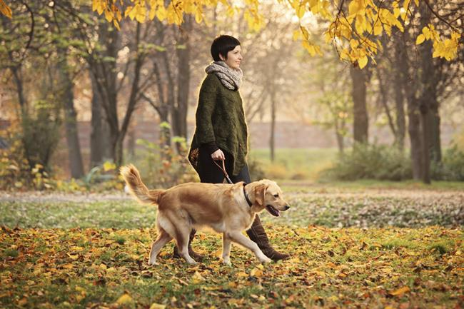 Hành trình dài bắt đầu từ những vết chân, cuộc đời là sự tích lũy của biết bao nhiêu năm tháng. (Ảnh: soyunperro.com)