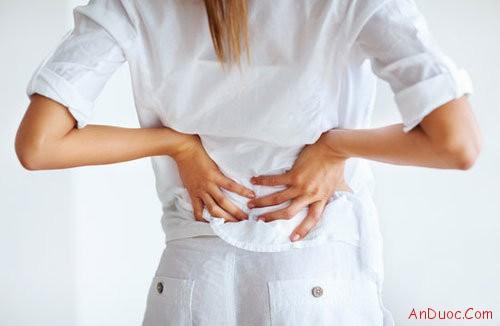Tác dụng bất ngờ của ngải cứu trong việc chữa đau lưng