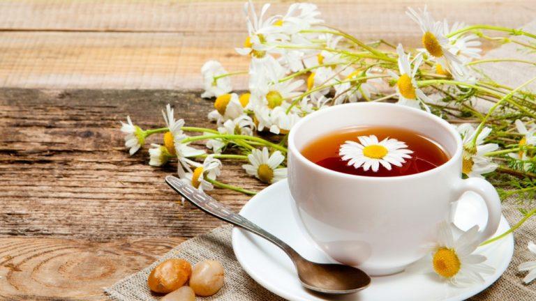 Uống trà hoa cúc mỗi ngày giúp cơ thể khỏe mạnh, tinh thần thoải mái