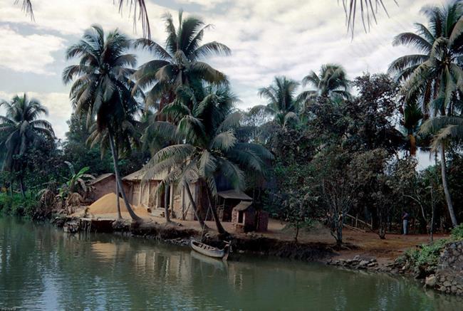 Ngày xưa ta sống trong gian nhà cũ, xung quanh là vườn cỏ xanh rì, thanh bình và tĩnh lặng thật tốt đẹp biết bao. Ảnh hinhanhvietnam.com