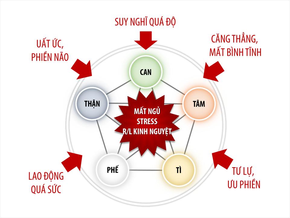 Nguyên nhân gây Stress & Mất ngủ theo quan điểm Đông Y