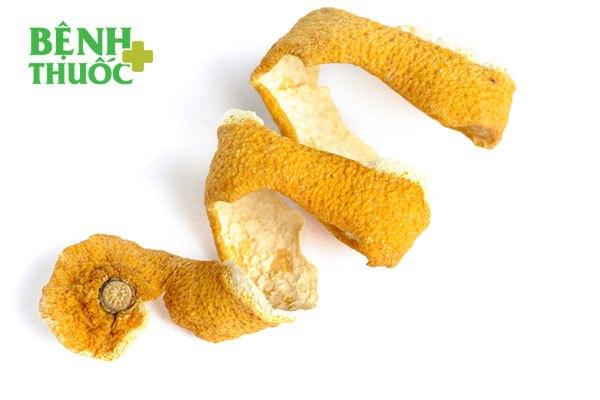 Vỏ bưởi khô và ích mẫu kết hợp với nhau còn giúp chữa bệnh sản giật