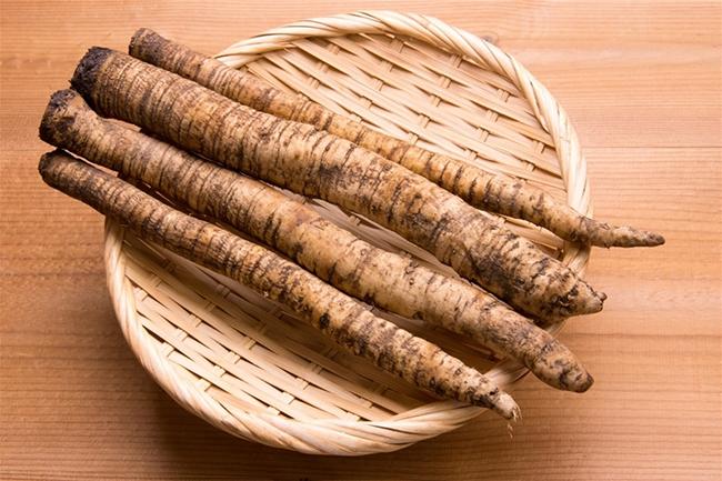 Củ Ngưu bàng, một thành phần quan trọng trong món canh dưỡng sinh.
