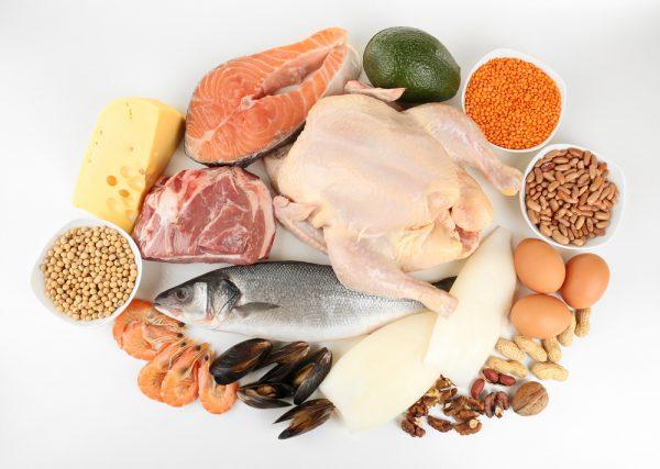 Đạm động vật chính là thức ăn yêu thích nhất của tế bào ung thư