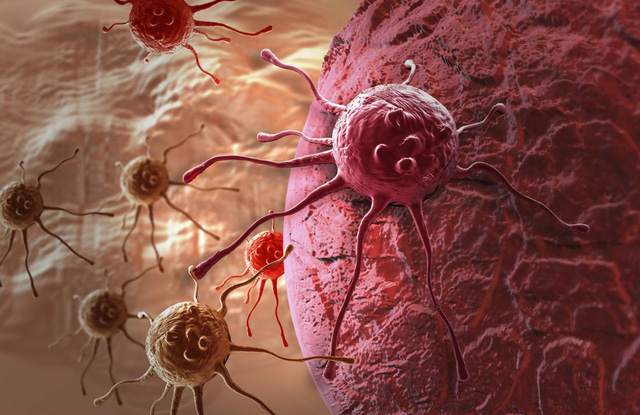 Không nuôi các tế bào ung thư để nó không thể phát triển.(Ảnh minh họa)