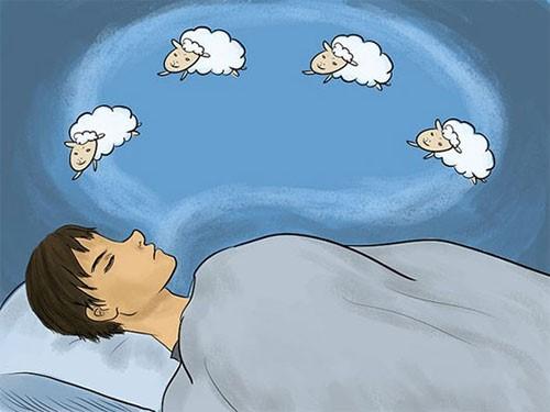 Phương phát gia truyền chữa bệnh mất ngủ là đếm cừu không phải lúc nào cũng hiệu quả!