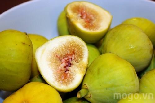 Quả sung chữa bệnh dạ dày có nhiều ở Việt Nam.
