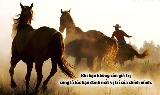 Câu chuyện chú ngựa lười và bài học nhớ đời
